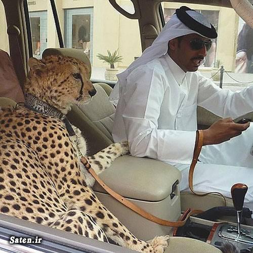 عکس دبی عکس بچه پولدار خارجی عکس بچه پولدار اخبار دبی Rich kids dubai rich kids
