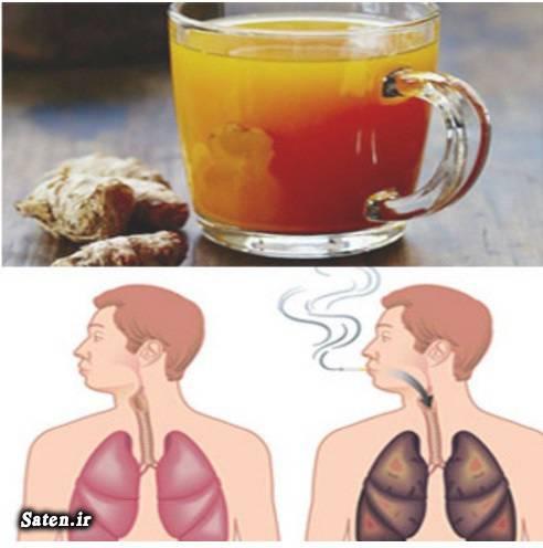 طب سنتی شستشوی ریه ها ریه چیست درمان گرفتگی صدا درمان خانگی پاکسازی ریه از دود قلیان و سیگار