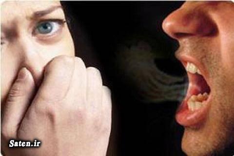 مجله سلامت درمان بوی بد دهان خواص کاهو خواص سیر بوی سیر بهداشت دهان و دندان