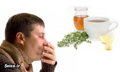 متخصص طب سنتی طرز تهیه دمنوش طب سنتی سرماخوردگی بزرگسالان درمان سرماخوردگی درمان خانگی بهترین دمنوش گیاهی