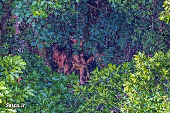 عکس جنگل عکس جالب جنگل آمازون توریستی برزیل انسان های اولیه اخبار برزیل