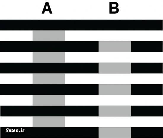 عکس های خطای دید باحال عکس های خطای دید با توضیح عکس خطای دید خطای دید خفن خطای دید باور نکردنی خطای دید