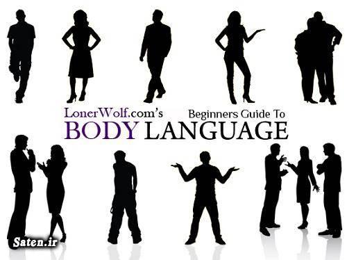 موفقیت در بازار راز موفقیت بادی لنگویچ بادی لنگویج مردان ایرانی بادی لنگویج مردان بادی لنگویج در مدیریت بادی لنگویج در فروش آموزش بادی لنگویج body language چیست