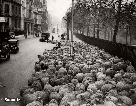عکس لندن عکس قدیمی زندگی در انگلیس اخبار لندن اخبار انگلیس