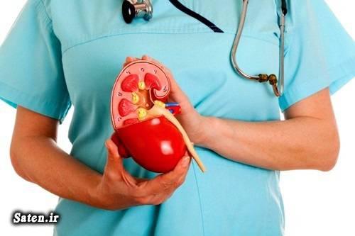 ویتامین دی نارسایی کلیه مجله پزشکی متخصص کلیه و مجاری ادرار کمبود ویتامین d عکس کلیه بیماری های کلیه