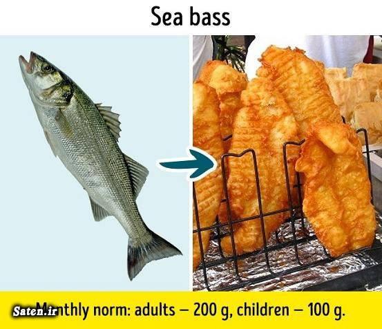 مضرات ماهی تیلاپیا مضرات مار ماهی مضرات تن ماهی متخصص تغذیه ماهی خال خالی ماهی پانگاسیوس گربه ماهی حلال است یا حرام خوردن مار ماهی خوردن گربه ماهی خواص ماهی بهترین ماهی پرورشی