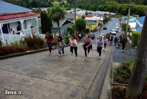 عکس های جالب و زیبا سفر به نیوزیلند خیابان جالب خیابان بالدوین نیوزیلند توریستی نیوزیلند