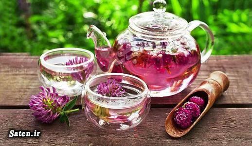 کبد چرب طرز تهیه دمنوش ریشه گل قاصدک درمان گیاهی کبد چرب با طب سنتی درمان کبد چرب خواص خارمریم بهترین دمنوش گیاهی انواع دمنوش ترکیبی