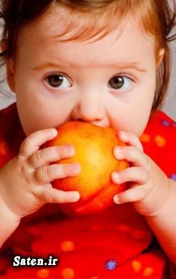 مغز هلو مضرات هلو متخصص طب سنتی طب سنتی رژیم کاهش وزن دوران بارداری درمان خانگی واریس پا خواص هلو در بارداری خواص هلو برای پوست خواص میوه ها حین بارداری