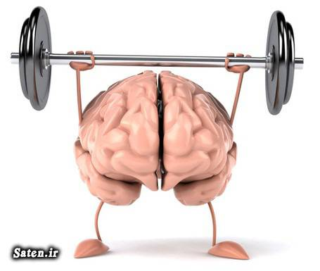 ویتامین ب1 منابع غذایی ویتامین C مجله سلامت کمبود ویتامین تقویت هوش تقویت مغز در طب سنتی