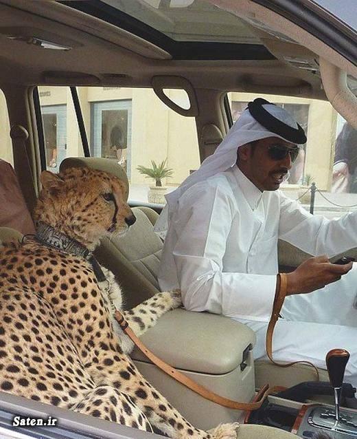 لاکچری بودن یعنی چی لاکچری عکس بچه پولدار خارجی ثروتمندان عرب بچه پولدار