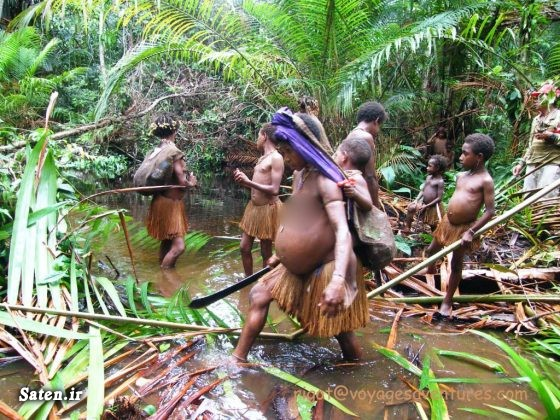 گوشت انسان قبیله کرووای قبیله برهنه قبایل آدمخوار عکس آدمخوار عصر حجری زنان قبیله کومبای پاپوآ گینه نو انسان های اولیه Korowai people