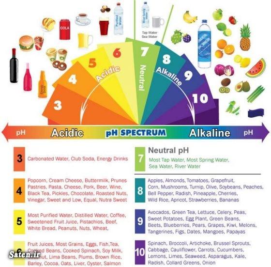 مقابله با اسیدی شدن بدن مجله سلامت متخصص تغذیه جدول مواد غذایی اسیدی و قلیایی