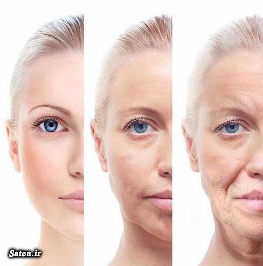 کلاژن و الاستین زیبایی صورت زیبایی زنان راههای زیبا شدن پوست صورت راه های مراقبت از پوست بدن جوان سازی پوست صورت پوست صاف و بدون جوش پوست زیبا بهترین کرم پوست صورت برای مراقبت از پوست چه باید کرد برای صاف شدن پوست صورت چه باید کرد
