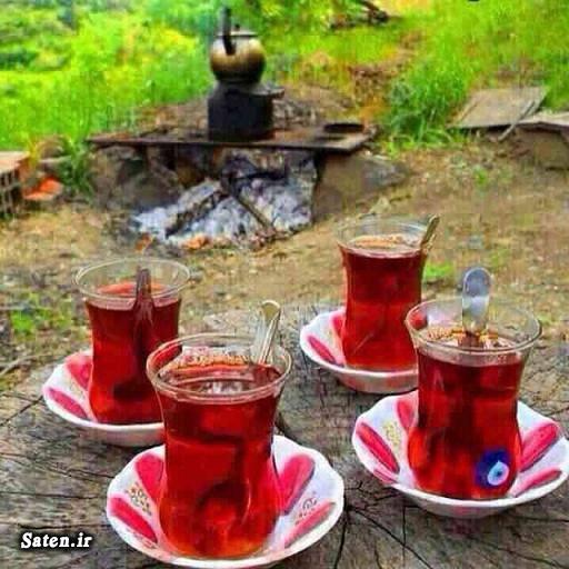 قیمت چای ایرانی قیمت انواع چای چای سنتی دست ساز برند های چای ایرانی انواع چای ایرانی