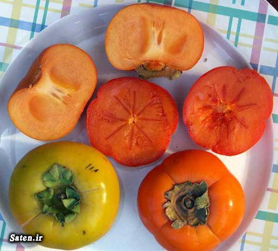 طبع خرمالو خواص میوه ها خواص خرمالو خرمالوی ژاپنی خرمالو در بارداری