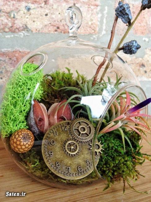 گلهای مناسب تراریوم ساخت وسایل دکوری دست ساز زیباترین دکوراسیون دکوراسیون خلاقانه دکور مناظره خلاقیت در ساخت تراریوم تراریوم های زیبا تراریوم کاکتوس تراریوم چیست تراریوم باغ شیشه ای آموزش خلاقیت