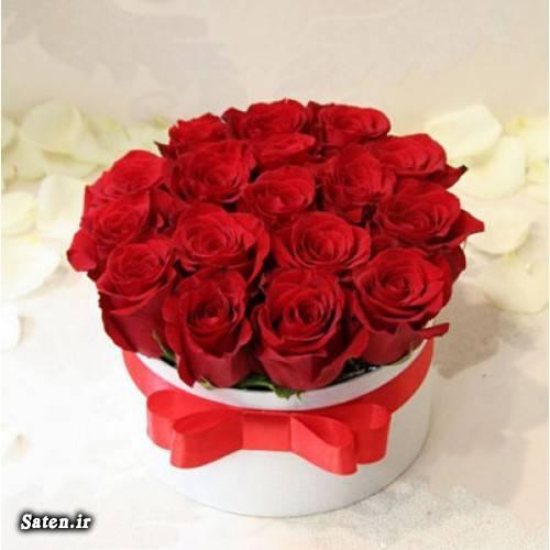 هدیه عاشقانه هدیه رمانتیک هدیه تولد مدل زیبا گل زیبا گل رز داخل جعبه گل آرایی با گل طبیعی کادو چی بخرم قیمت باکس گل رز قیمت انواع گل جعبه گل رز جعبه کادو برای گل تزیین کادو تولد تزیین کادو با گل تزیین سبد گل طبیعی بهترین هدیه برای خانمها باکس گل شیشه ای باکس گل چوبی باکس گل ارزان بازار گل تهران آموزش گل آرایی