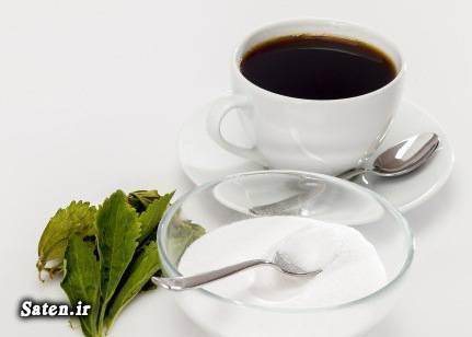 گیاه استویا کشت استویا قیمت شکر استویا دیابتی ها چه بخورند پرسودترین محصول کشاورزی بهترین محصول کشاورزی برای کاشت بهترین جایگزین قند و شکر برنامه غذایی برای دیابتی ها استویا را از کجا تهیه کنیم Stevia