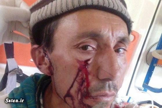 یوزپلنگ ایرانی عکس شکار پلنگ ایرانی حوادث مازندران پلنگ ایرانی اخبار مازندران اخبار کلاله