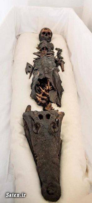 مومیایی کردن اجساد کشف آثار باستانی عکس های مومیایی عجایب باستان شناسی اخبار ترکیه آثار باستانی چیست