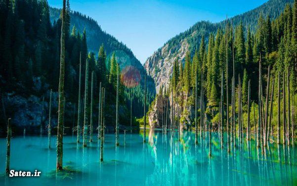 مناطق گردشگری قزاقستان قزاقستان عکس جنگل عجایب طبیعی عجایب شگفت انگیز جهان دریاچه کیندی جنگل زیر آب