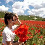 کریمه اوکراین عکس دشت شقایق طبیعت زیبا زیباترین عکسهای طبیعت جهان دشت شقایق انواع گل با عکس